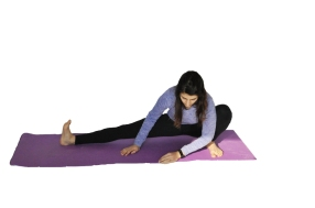 side adductor stretch_mod_scaled