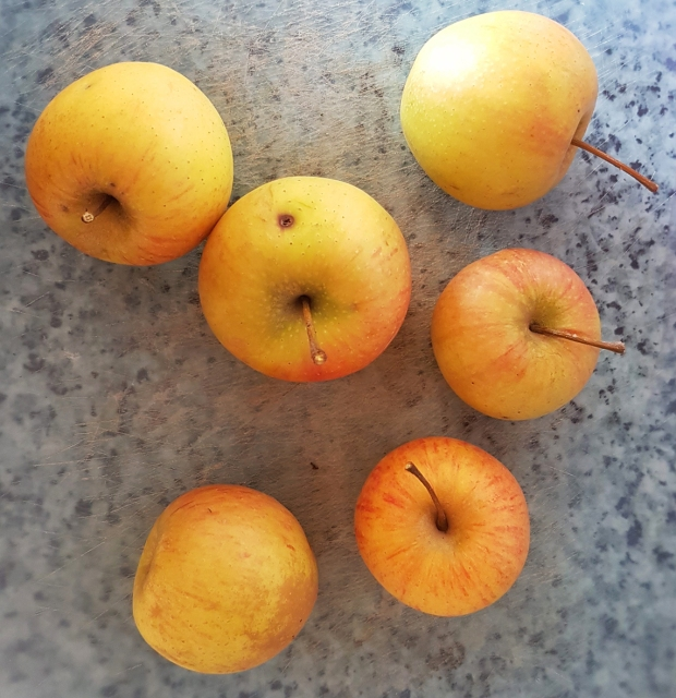 6 small apples